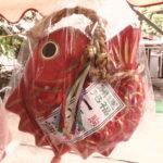 特大一年安鯛(あんたい)